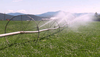 Photo: sustainable irrigation