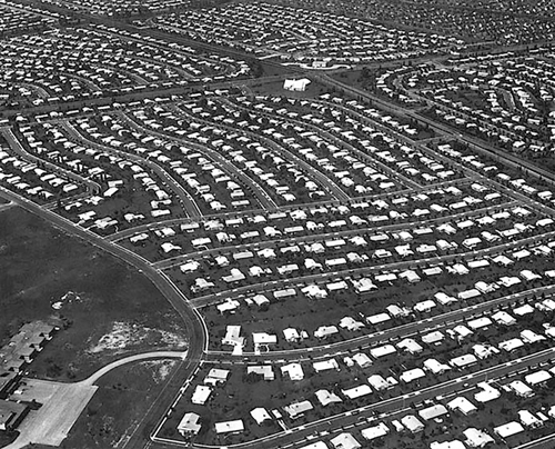 Levittown subdivision in the nineteen fifties