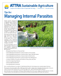 OREI_tips_managing_parasites.png