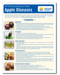apple_diseases.png