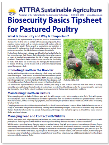 biosecurity-pastured-poultry-tipsheet.png