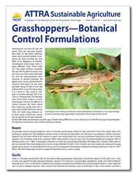 grasshoppers_tip_sheet.png