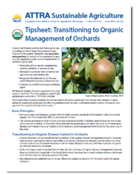 organic_orchard_management.png