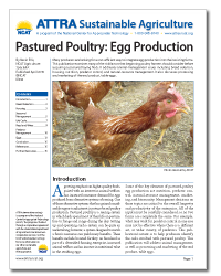 pastured_poultry_egg_production.png