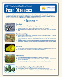 pear_diseases_diagnostic.png