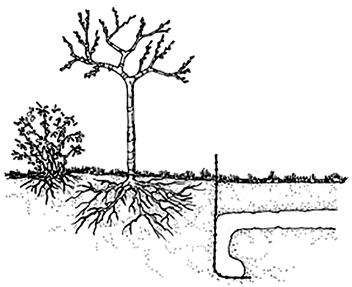 example of barrier fencing illustration
