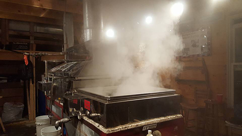 boiling sap in an evaporator