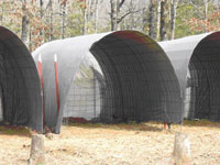 Cattle panels with tarp provide shelter for goats.
