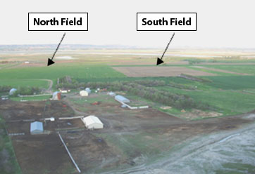 sky view of north and south fields