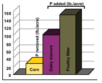 Figure 11. P Added in Manure/Removed by Crop