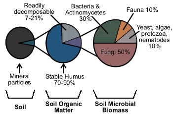 Figure 2. Components of Soil Organic Matter