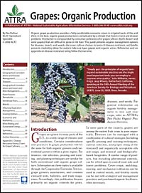 Organic Grapes publication cover