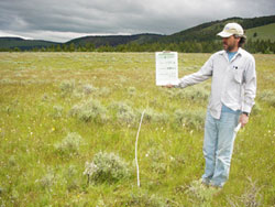 Rangeland monitoring transect in sw Montana.