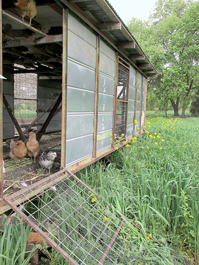 mobile poultry housing