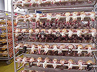 Poultry plants in France