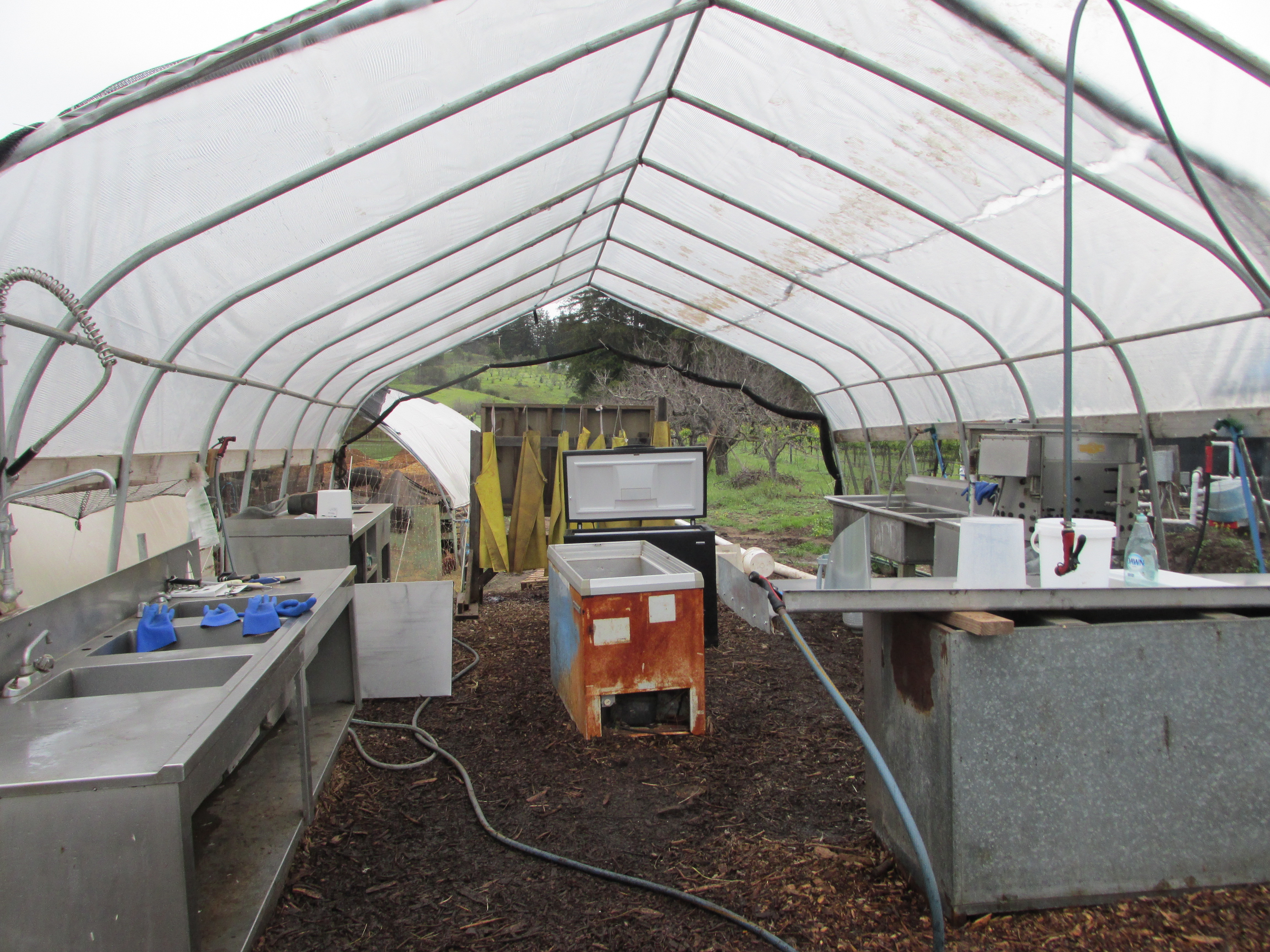 on-farm chicken processing set-up