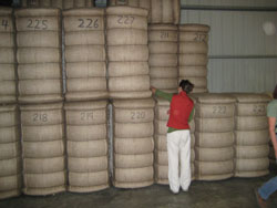 Cotton bales in warehouse.