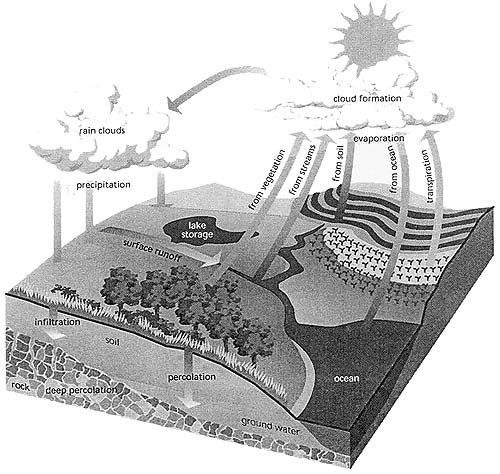 external image water_cycle.jpg