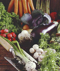 Photo of vegetables.