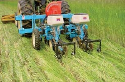 Weed Management with Roller-Crimper