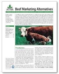 Beef Marketing Alternatives