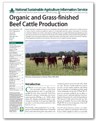 Organic and Grass-finished Beef Cattle Production