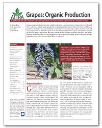 Grapes: Organic Production