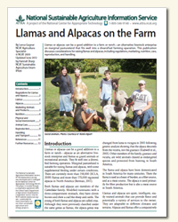 Llamas and Alpacas on the Farm