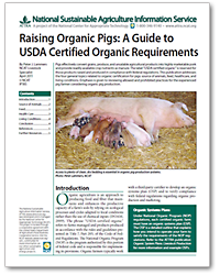 Raising Organic Pigs: A Guide to USDA Certified Organic Requirements
