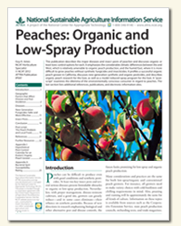 Peaches: Organic and Low-Spray Production