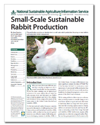 Small-Scale Sustainable Rabbit Production