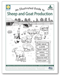 An Illustrated Guide to Sheep and Goat Production
