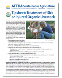 Tipsheet: Treatment of Sick or Injured Organic Livestock