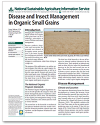 Disease and Insect Management in Organic Small Grains