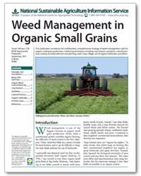 Weed Management in Organic Small Grains