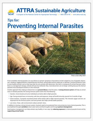 Tips for: Preventing Internal Parasites