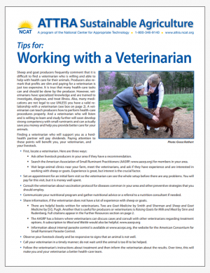 Tips for: Working with a Veterinarian