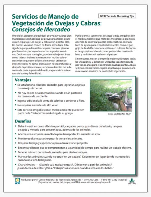 Servicios de Manejo de Vegetación de Ovejas y Cabras