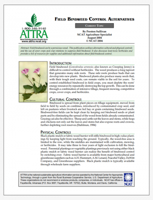 Field Bindweed Control Alternatives