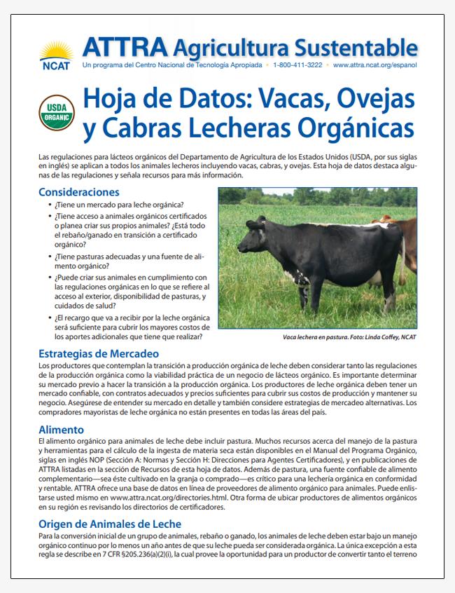Hoja de Datos: Vacas, Ovejas y Cabras Lecheras Organicas