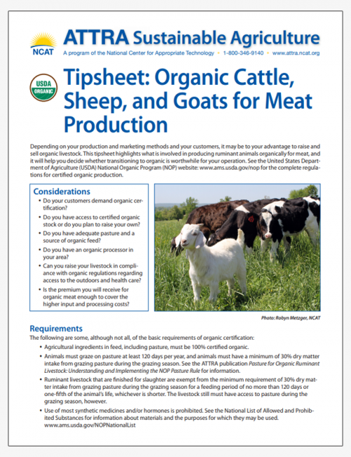 Tipsheet: Organic Cattle, Sheep, and Goats for Meat Production