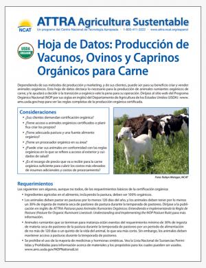 Hoja de Datos: Produccion de Vacunos, Ovinos y Caprinos Organicos para Carne
