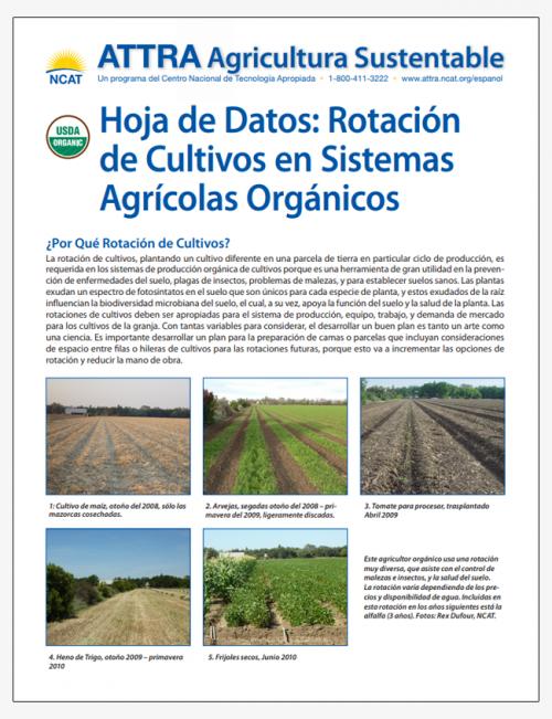 Hoja de Datos: Rotacion de Cultivos en Sistemas Agricolas Organicos