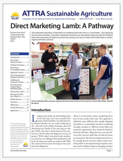 Direct Marketing Lamb: A Pathway
