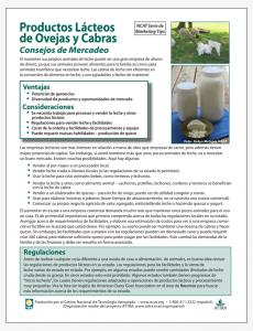 Productos Lácteos de Ovejas y Cabras