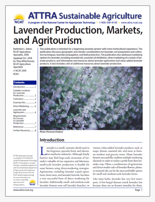 Lavender Production, Markets, and Agritourism