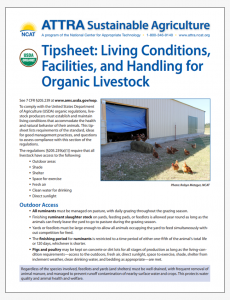 Tipsheet: Living Conditions, Facilities, and Handling for Organic Livestock