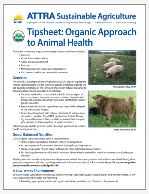 Tipsheet: Organic Approach to Animal Health