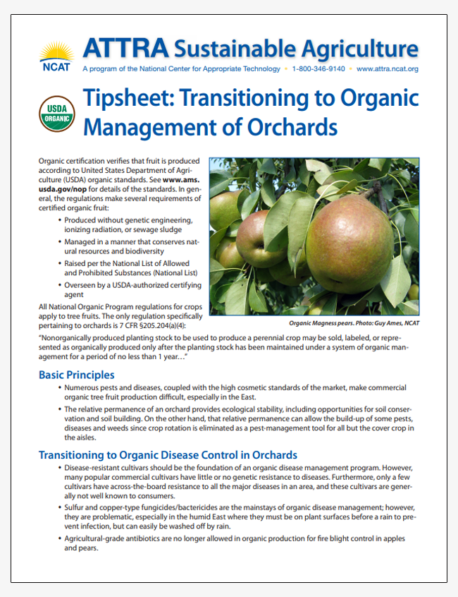 Tipsheet: Transitioning to Organic Management of Orchards