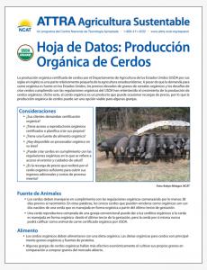 Hoja de Datos: Produccion Organica de Cerdos